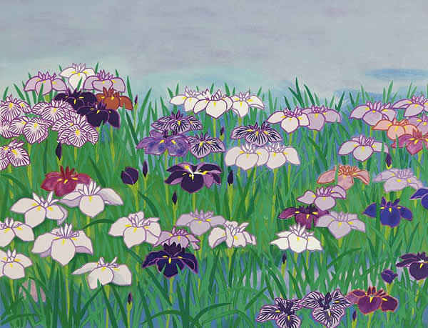 Japanese Iris paintings and prints by Chosei MIWA
