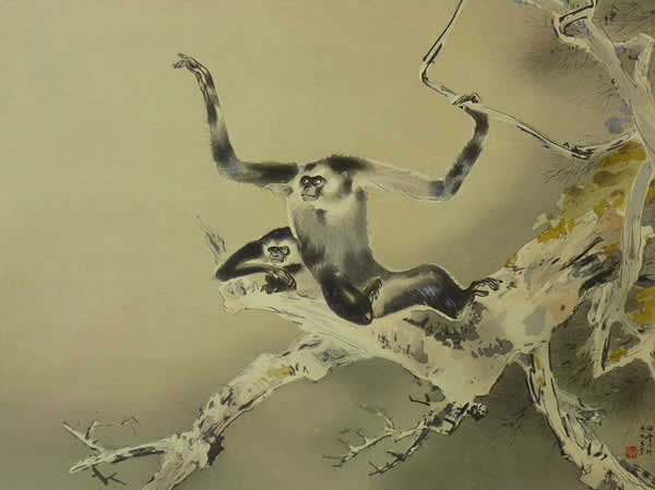Japanese Monkey paintings and prints by Kansetsu HASHIMOTO