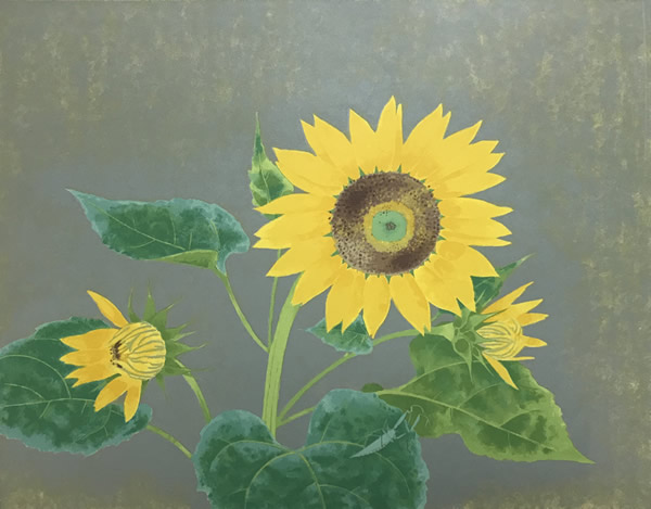 Japanese Sunflower paintings and prints by Kayo YAMAGUCHI