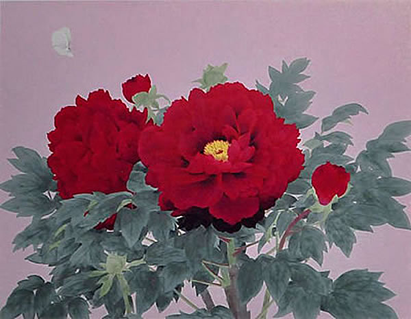 Japanese Peony paintings and prints by Koichi NABATAME