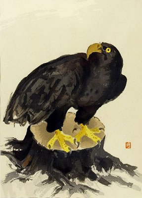 Japanese Eagle paintings and prints by Kunitaro SUDA