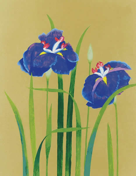 Japanese Iris paintings and prints by Taiji HAMADA