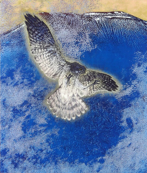 Japanese Hawk or Falcon paintings and prints by Yoshihiro SHIMODA