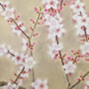 Japanese Peach Blossom paintings and prints