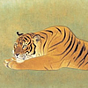 Japanese Tiger paintings and prints