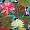 Japanese Water Lily paintings and prints